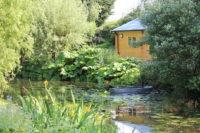 Beth Chatto Gardens